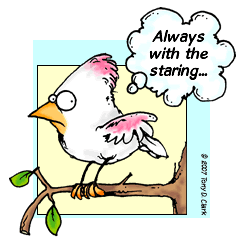 White Cardinal Cartoon